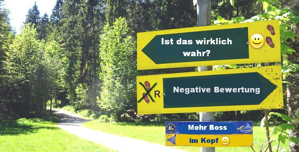 BossImKopf-normale-Gedanken-negative-Bewertungen-unterscheiden-Luschas