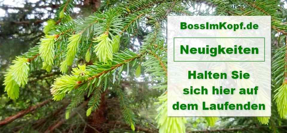 Bossimkopf-Bild-Neuigkeiten-Sich-auf-dem-Laufenden-halten-Luschas-002-960x447-Light