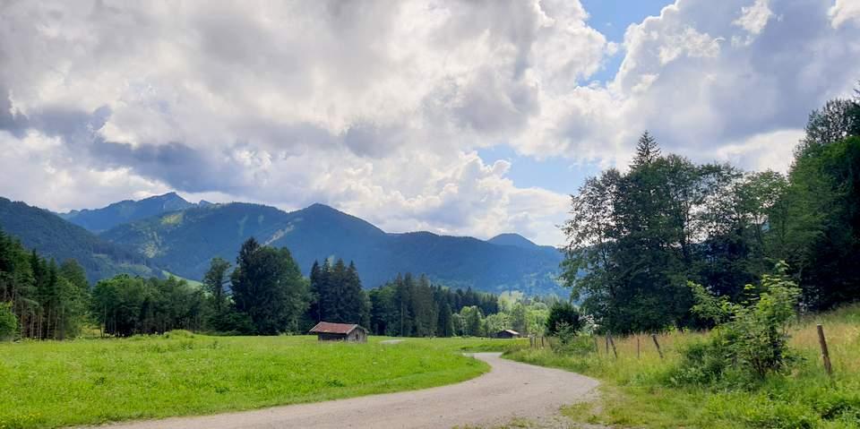 Negative-Gedanken-aendern-5-Fragen-Bossimkopf-Luschas